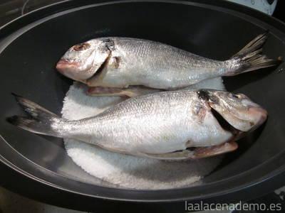 Dorada a la sal con Thermomix, antes de cubrir con sal por encima