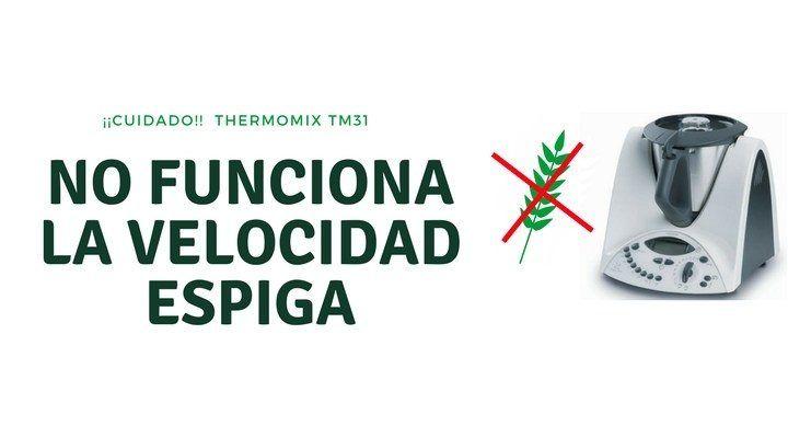 No funciona la velocidad espiga en Thermomix TM31