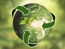 RECICLA: salvando el planeta